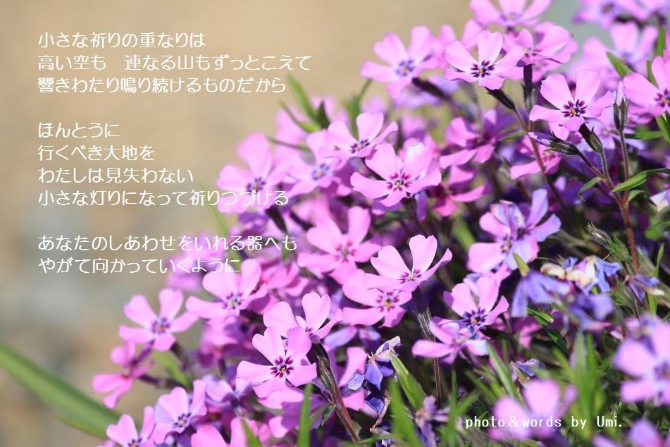 f0351844_10595604.jpg