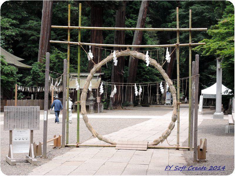 ◆ 「水郷潮来あやめまつり」から「鹿島神宮」へ、その2 (2014年6月)_d0316868_8341783.jpg