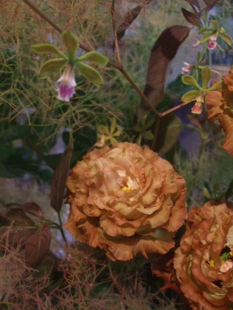 オークリーフ花の教室(甘艸さんと大草さんの作品)_f0049672_1621716.jpg