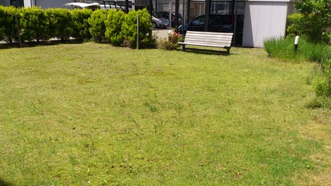我が家の庭にて。_d0182179_1948079.jpg