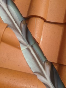 板橋区の小茂根で瓦屋根の点検_c0223192_22535794.jpg
