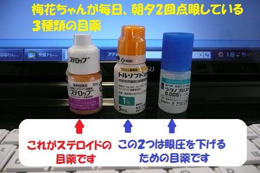 f0121712_15104843.jpg