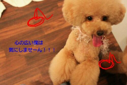 b0130018_20111079.jpg