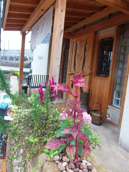 自然農「梅ジャム」店頭に 並びました。_a0125419_19132696.jpg