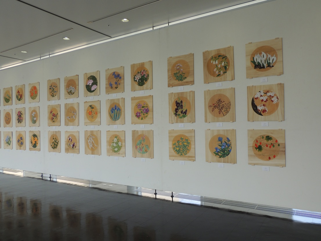 瀧仙寺本堂天井画展_e0240147_92666.jpg