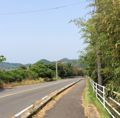 42.195kmへの道_c0217853_21520925.jpg