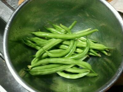 収穫!_d0318916_1932631.jpg