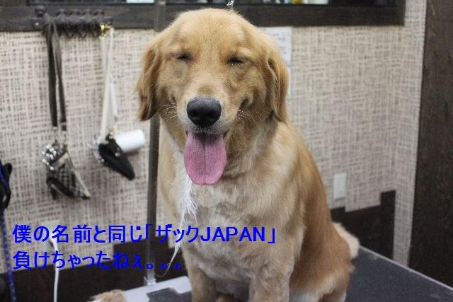 b0130018_912084.jpg