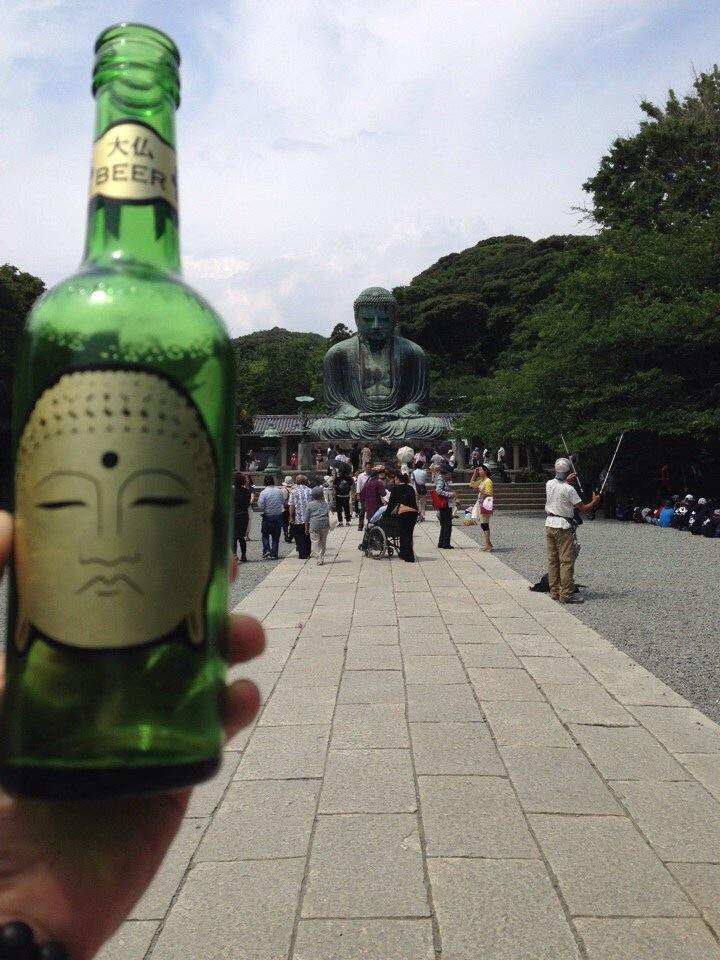 2014 6月 紫陽花散策 鎌倉大仏_f0062122_9303693.jpg