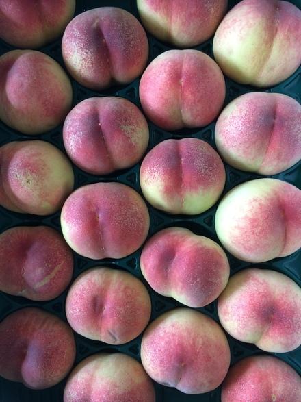旬です桃です食べます・・・♪6/27①_b0247223_18142557.jpg