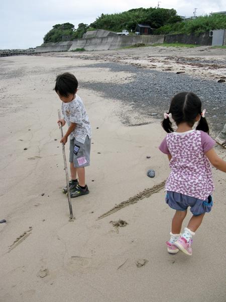 海で遊ぶ_f0129726_21363114.jpg