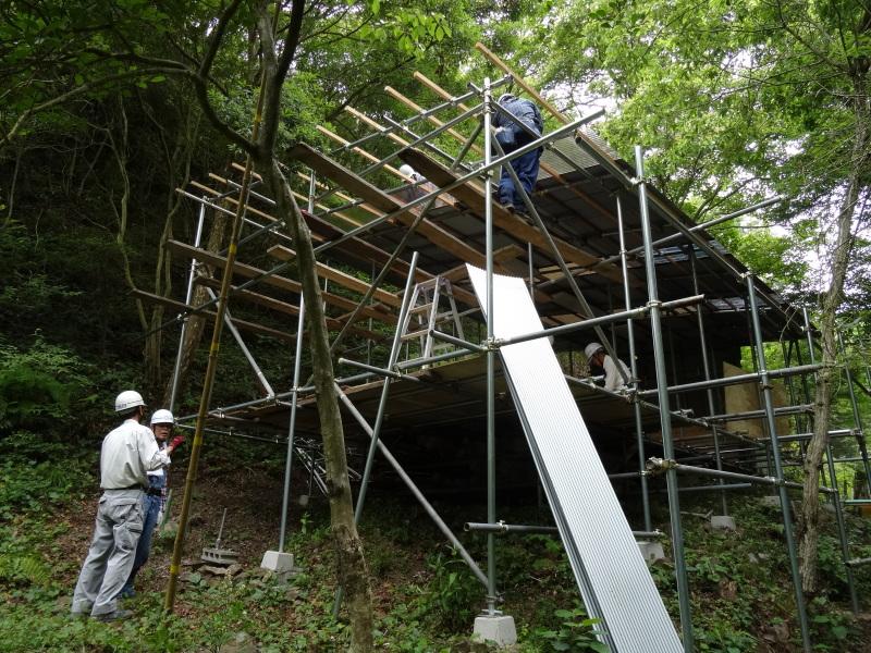 パイプハウス増設の屋根張り完了 in 孝子の森     by     (TATE-misaki)_c0108460_21371035.jpg