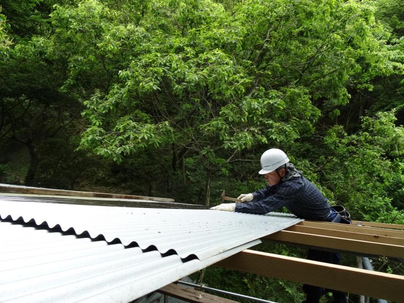 パイプハウス増設の屋根張り完了 in 孝子の森     by     (TATE-misaki)_c0108460_21371199.jpg