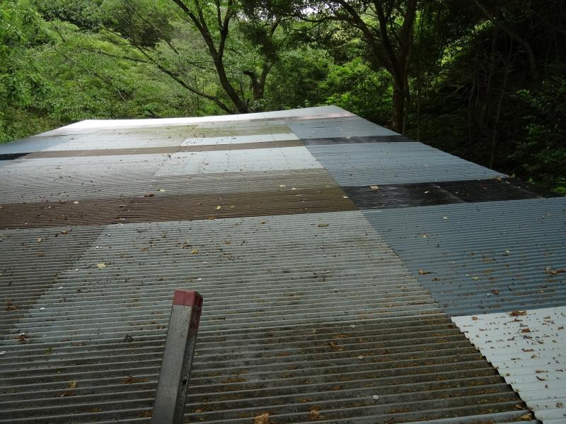 パイプハウス増設の屋根張り完了 in 孝子の森     by     (TATE-misaki)_c0108460_21433985.jpg