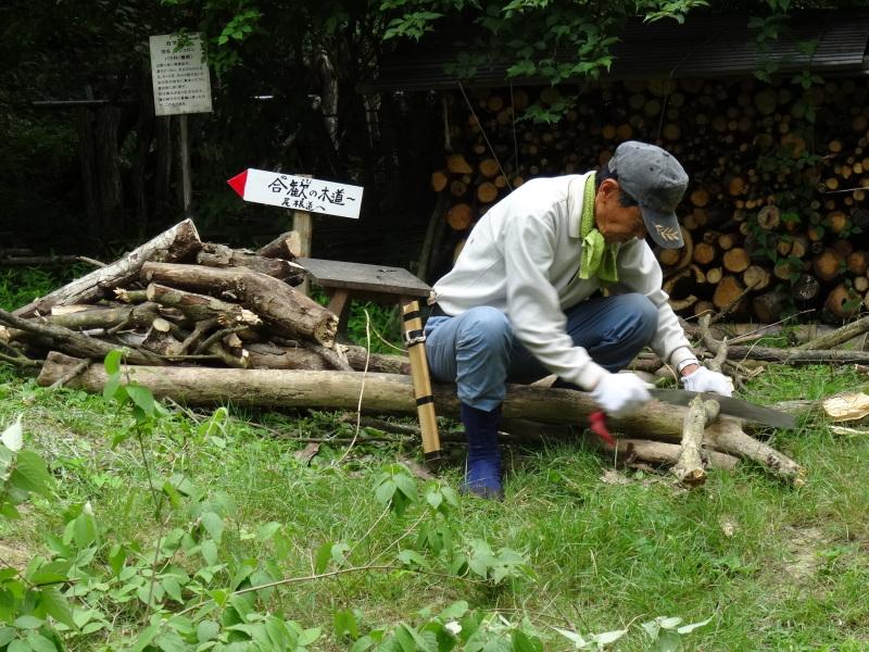 パイプハウス増設の屋根張り完了 in 孝子の森     by     (TATE-misaki)_c0108460_21434193.jpg
