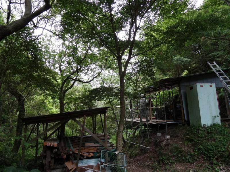 パイプハウス増設の屋根張り完了 in 孝子の森     by     (TATE-misaki)_c0108460_21470701.jpg
