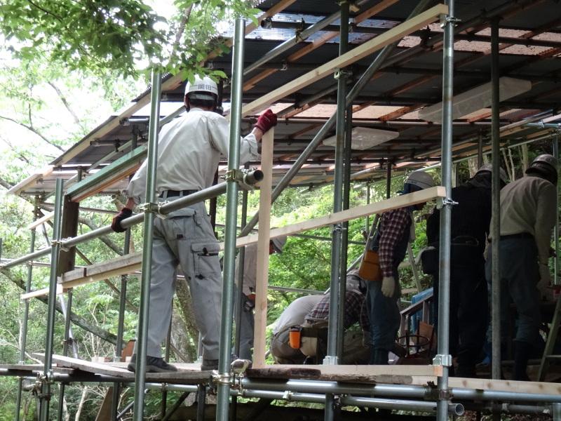 パイプハウス増設の屋根張り完了 in 孝子の森     by     (TATE-misaki)_c0108460_21470742.jpg