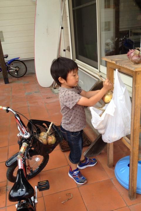 春樹のお手伝いは食材の収穫作業_f0009169_759267.png