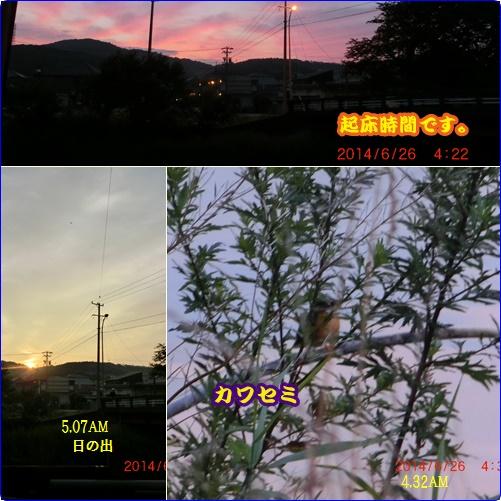 d0007071_5432917.jpg