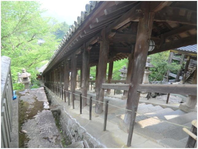 梅雨の晴れ間に長谷寺へ・・・紫陽花どやろ・・・その3、これで終わり_b0104092_16173717.jpg