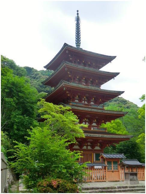 梅雨の晴れ間に長谷寺へ・・・紫陽花どやろ・・・その3、これで終わり_b0104092_16413757.jpg