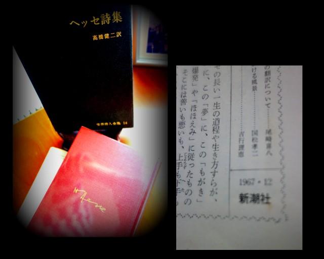 f0137694_79426.jpg