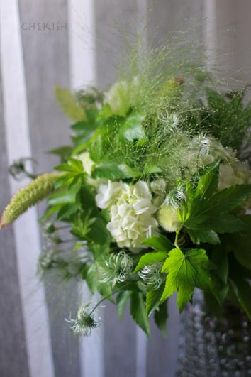 紫陽花の季節_b0208604_10180164.jpg