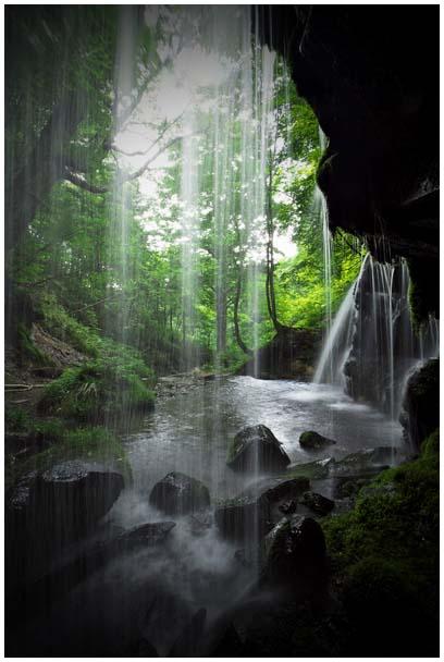 シワガラの滝_d0272207_11583059.jpg