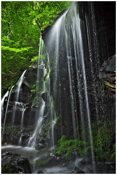 シワガラの滝_d0272207_11583813.jpg