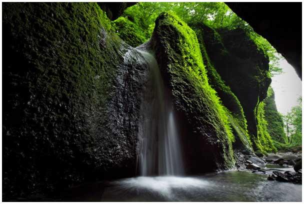 シワガラの滝_d0272207_13525218.jpg