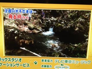 TV東京さんにはいつもお世話になっております。_d0161933_15584188.jpg