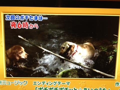 TV東京さんにはいつもお世話になっております。_d0161933_1559186.jpg