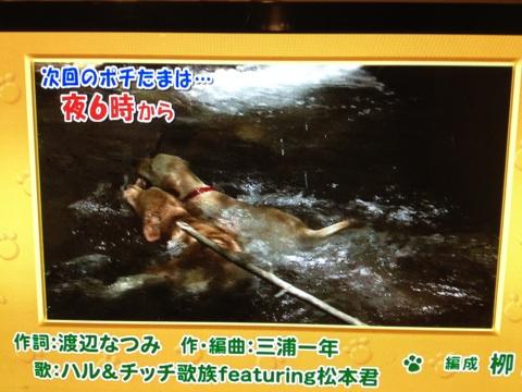 TV東京さんにはいつもお世話になっております。_d0161933_15592211.jpg