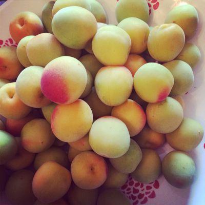 雨が上がっているあいだに、梅とフルーツ収穫へ_c0162653_9434580.jpg