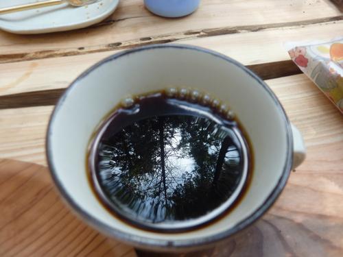 7月13日(日)「樹の伐採&森カフェ」を開催します♪_e0263590_2073297.jpg