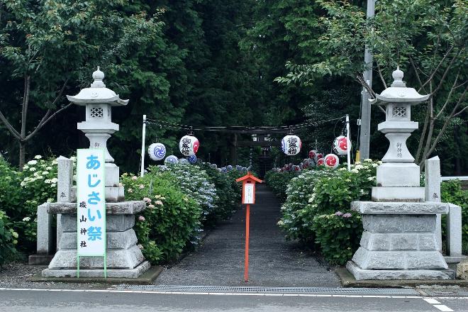 鹿沼 磯山神社のあじさい祭り2014_e0227942_23003854.jpg