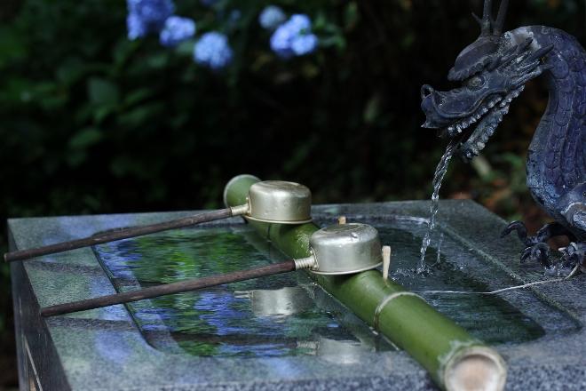 鹿沼 磯山神社のあじさい祭り2014_e0227942_23033041.jpg