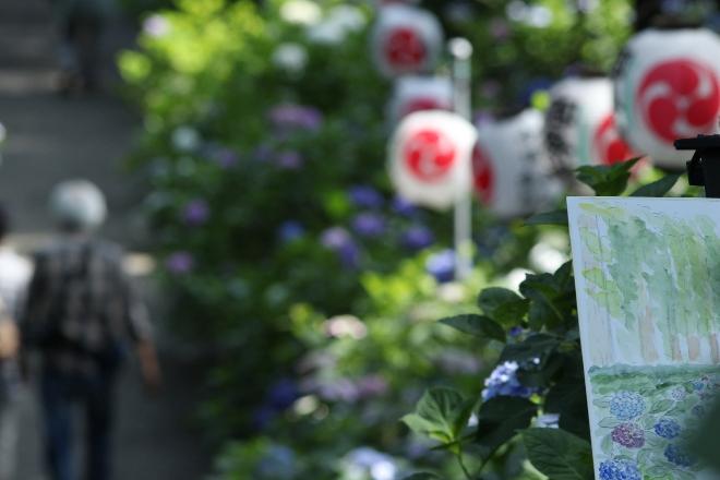 鹿沼 磯山神社のあじさい祭り2014_e0227942_23090697.jpg