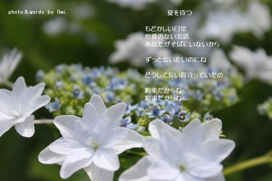 f0351844_14062834.jpg
