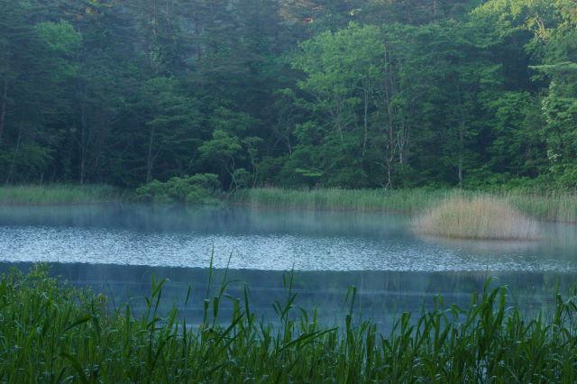 磐梯山を望む青い沼_a0257652_14501342.jpg