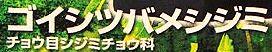 <2014年5月18~22日>九州登山デビュー&歴史探訪旅②:(椎葉峠越え&市房山)_c0119160_11332896.jpg