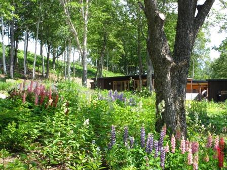 北海道ガーデンめぐりをしてきました~♪_a0243064_15112354.jpg