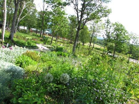 北海道ガーデンめぐりをしてきました~♪_a0243064_15123714.jpg