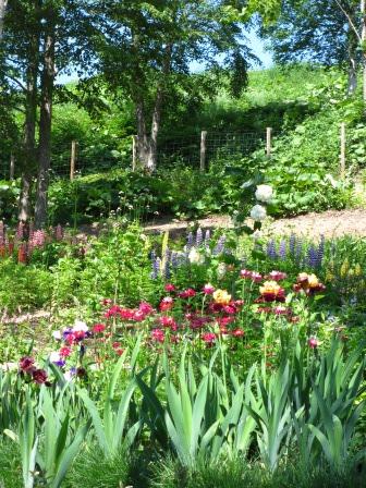 北海道ガーデンめぐりをしてきました~♪_a0243064_15130611.jpg
