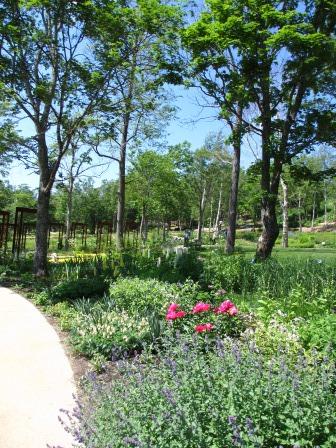 北海道ガーデンめぐりをしてきました~♪_a0243064_15132038.jpg