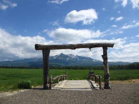 北海道ガーデンめぐりをしてきました~♪_a0243064_15292924.jpg