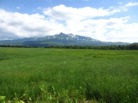 北海道ガーデンめぐりをしてきました~♪_a0243064_15300984.jpg
