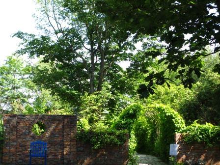 北海道ガーデンめぐりをしてきました~♪_a0243064_15412155.jpg