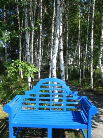 北海道ガーデンめぐりをしてきました~♪_a0243064_15443058.jpg