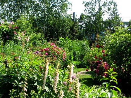 北海道ガーデンめぐりをしてきました~♪_a0243064_15451394.jpg